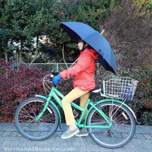 Why I love cycling in the rain!