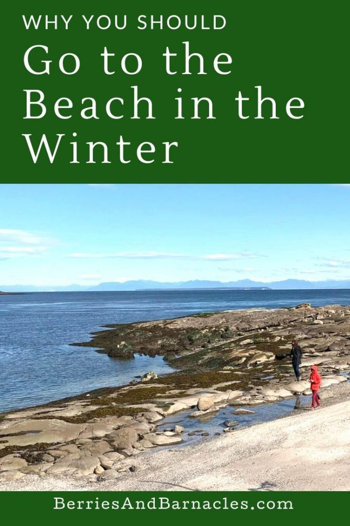 Three reasons to go to the beach on a winter's day