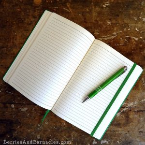 Why writers are afraid of a blank page. How to kick start your writing