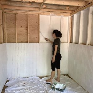 Tiny home interior finishes - plywood floor and exposed studs