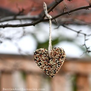Homemade birdseed feeders - A zero-waste valentine's treat.